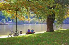 Park, cyklostezka, relaxace