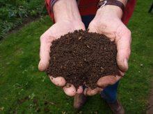 kompost, zemina, kompostování