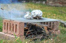 grilování, gril, grilování venku, grilovací centra, grilování v přírodě, park